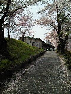 武甲山散歩